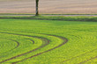 les traces courbes