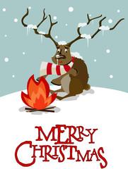 reindeer_cold