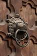 testa di leone; maniglia porta est Duomo di Trento