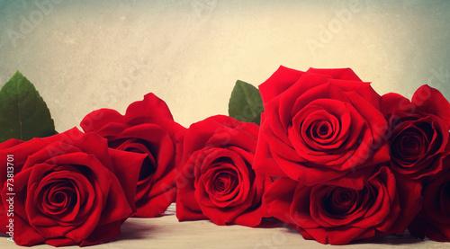 Plexiglas Rozen Vivid red roses