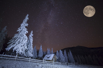 Dairy Star Trek in the winter mountains