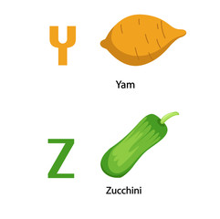 Alphabet Y-Z letter.yam,zucchini .vector