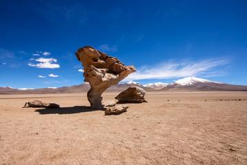 Arbol de Piedra or Stone Tree, Bolivia