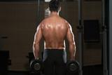 Bodybuilder Exercising Trapezius With Dumbbells poster