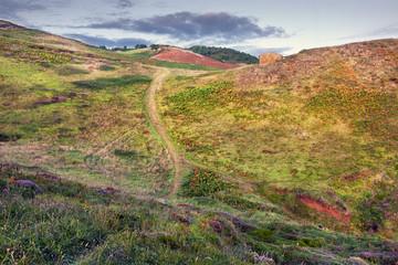 Campo en Quejo. CantabriaSantander.