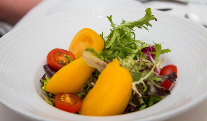 Field Green Salad with Red and Yellow Tomatoes