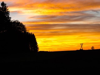 Silhouetten von Eiche und Hochsitz im Sonnenuntergang