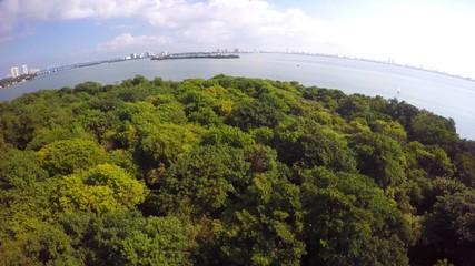 Mangrove Islands Miami aerial video