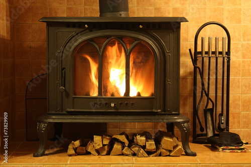 Fire burning in the fireplace - 73829909