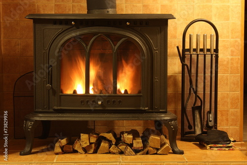 Fire burning in the fireplace - 73829936
