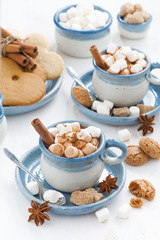 two cups of cocoa with marshmallows and cinnamon, top view