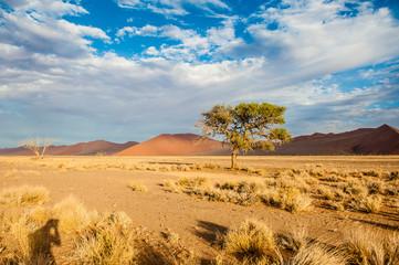 Namibia, Sossusvlei, Africa