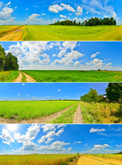 Set of summer country roads