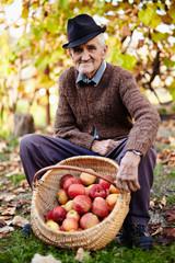 Senior farmer with apples