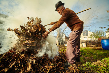 Old farmer burning dead leaves