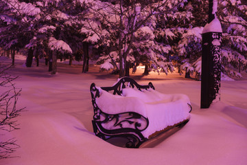 Snow covered bench in the park at night