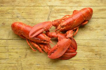 American lobster Amerikanischer Hummer Expo Milan 2015 food