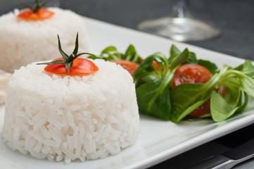 blanc Poulet sauce aux champignons accompagné de riz et salade