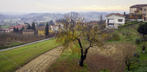 Monferrato fall panorama. Color image