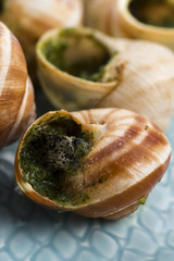 Close up of Escargots with garlic butter