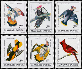 Stamp printed in Hungary shows Common Flicker