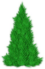fir victor