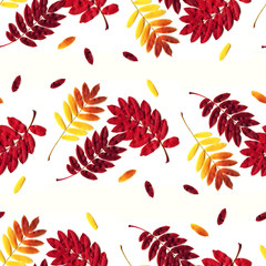 Seamless autumn leaves background pattern