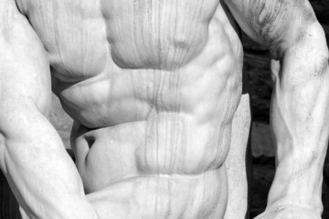 muscular man body- detail of Hercules and Cacus statue