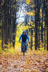 Cyclist riding mountain bike in colored autumn forest