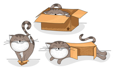 cat in box cartoon set