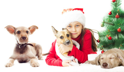 lovely kid in Santa hat with red puppy