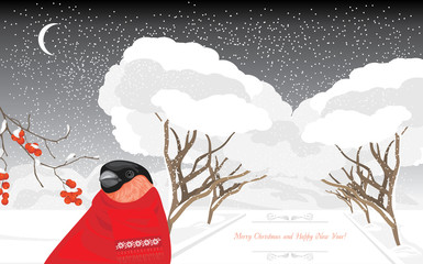 Bullfinch in the winter park. Christmas card