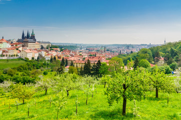 View over Prague from Strahov Monastery