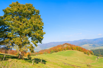 Green hills in autumn landscape of Pieniny Mountains, Poland