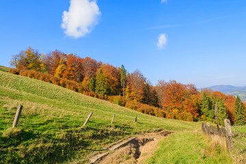 Countryside road in autumn landscape, Pieniny Mountains, Poland