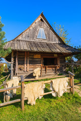 Sheep fur for sale in front of hut in Pieniny Mountains, Poland