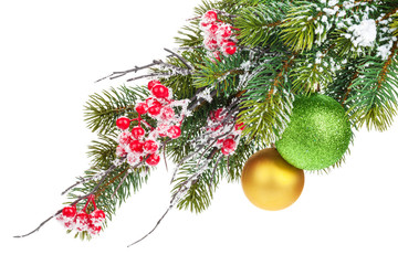 Christmas fir tree branch with holly berry and baubles