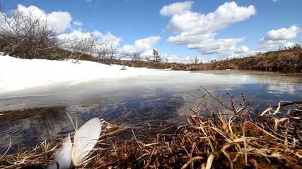 spring time warmly polar tundra melting of snow