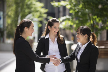 Female business colleagues shaking hands.