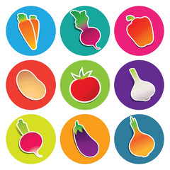 Set of vegetable icons in the circles