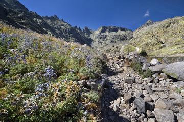 Camino de la Laguna Grande. Sierra de Gredos.