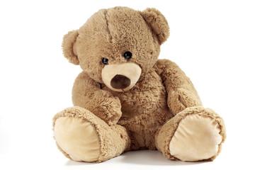 Teddy auf weissem Hintergrund