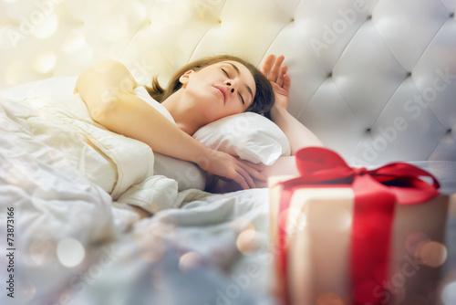 christmas gift - 73873166
