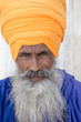 Portrait of Indian sikh man in turban with bushy beard