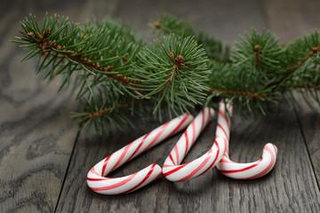 candy canes fir spruce twigs