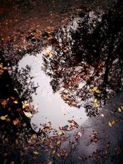 Il cielo grigio nell'acqua