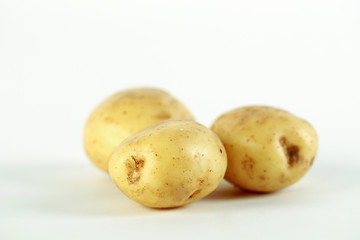 New two white yellow potatoes on white background