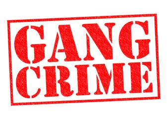 GANG CRIME