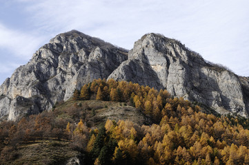 Mountain autumn