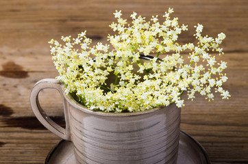Elderberry flower